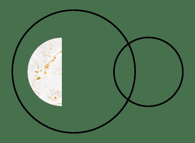 Lisa Bonn Circle Transitions Logo 3